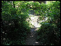 path to the river at Reservoir Spillway